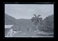 Chacachacare leper colony.